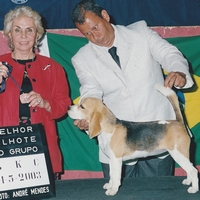 Aika Brasil Kennel Club