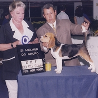 Jandaia Brasil Kennel Club
